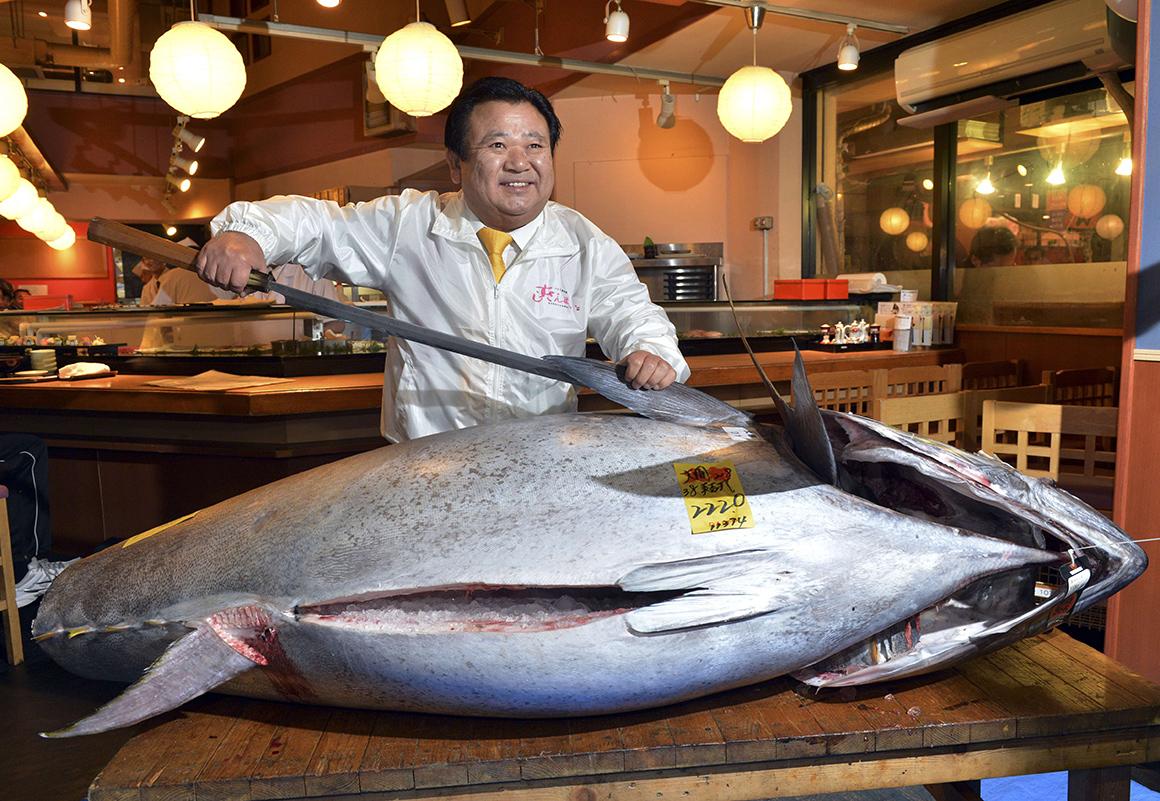 Tamano Japan  city pictures gallery : Atum gigante arrematado por 1,38 milhões de euros no Japão ...